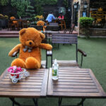 Teddy Bear shops in Delhi